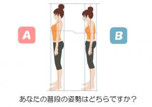 姿勢の比較