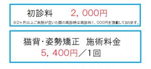 初診料2000円、施術1回5400円