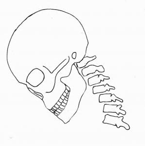 衝撃の波を受ける頸部
