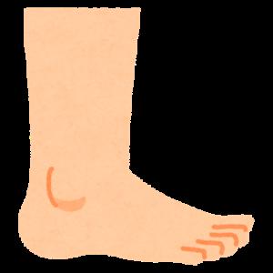 脚のイラスト